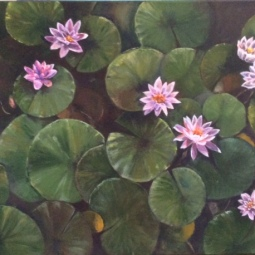 Waterlilies 18