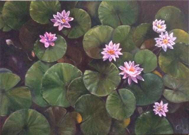 Waterlilies 18